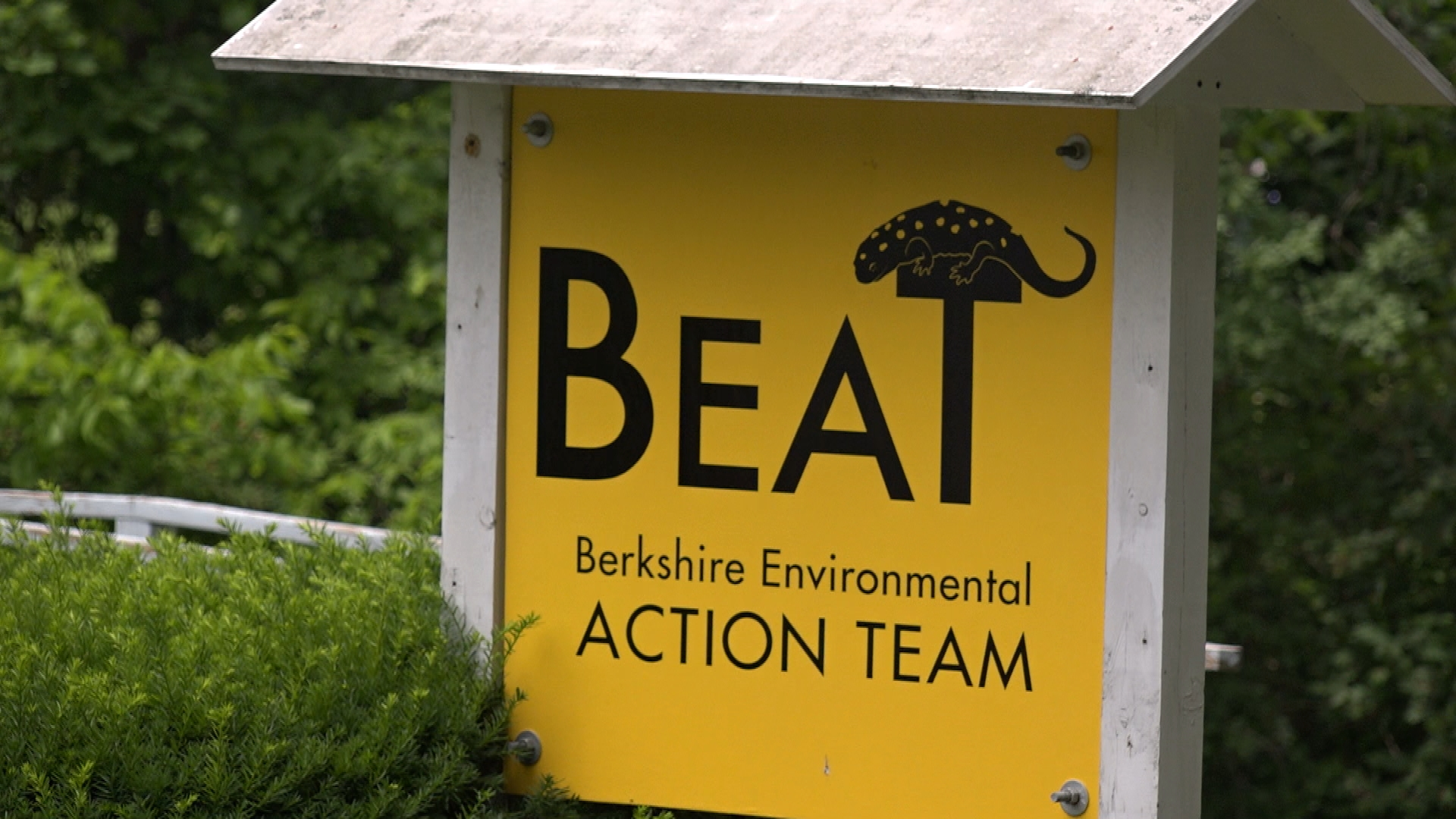 BEAT Supports EPA's New PCB Clean-Up Project (Part 1)
