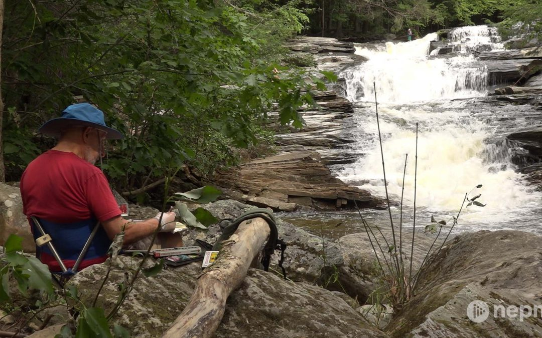 Exploring Waterfalls in Umpachene Falls Park