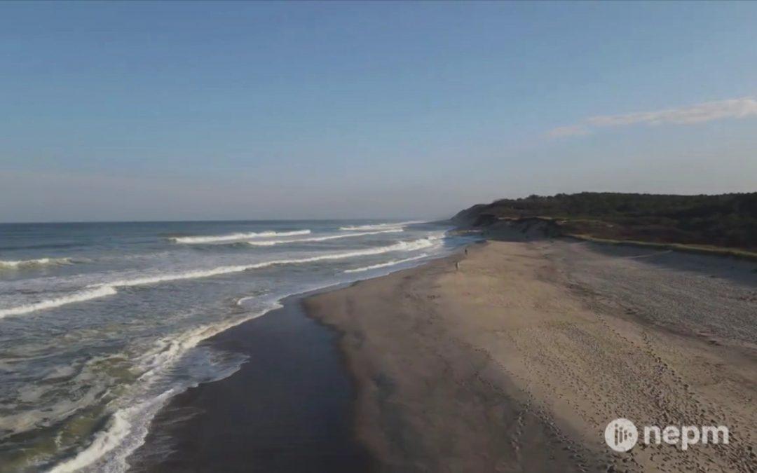 Cape Cod National Seashore: The Beach (Part 1)