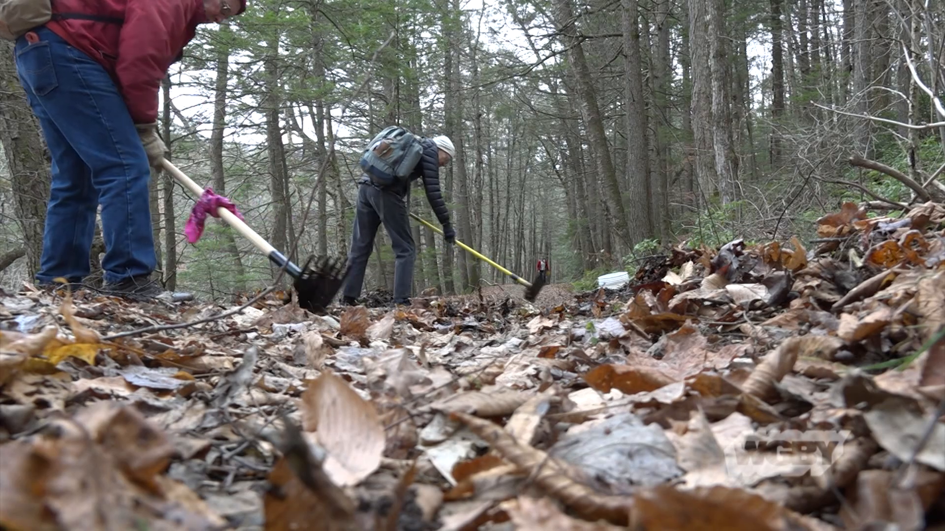 East Branch Trail Cleanup at Chesterfield Gorge