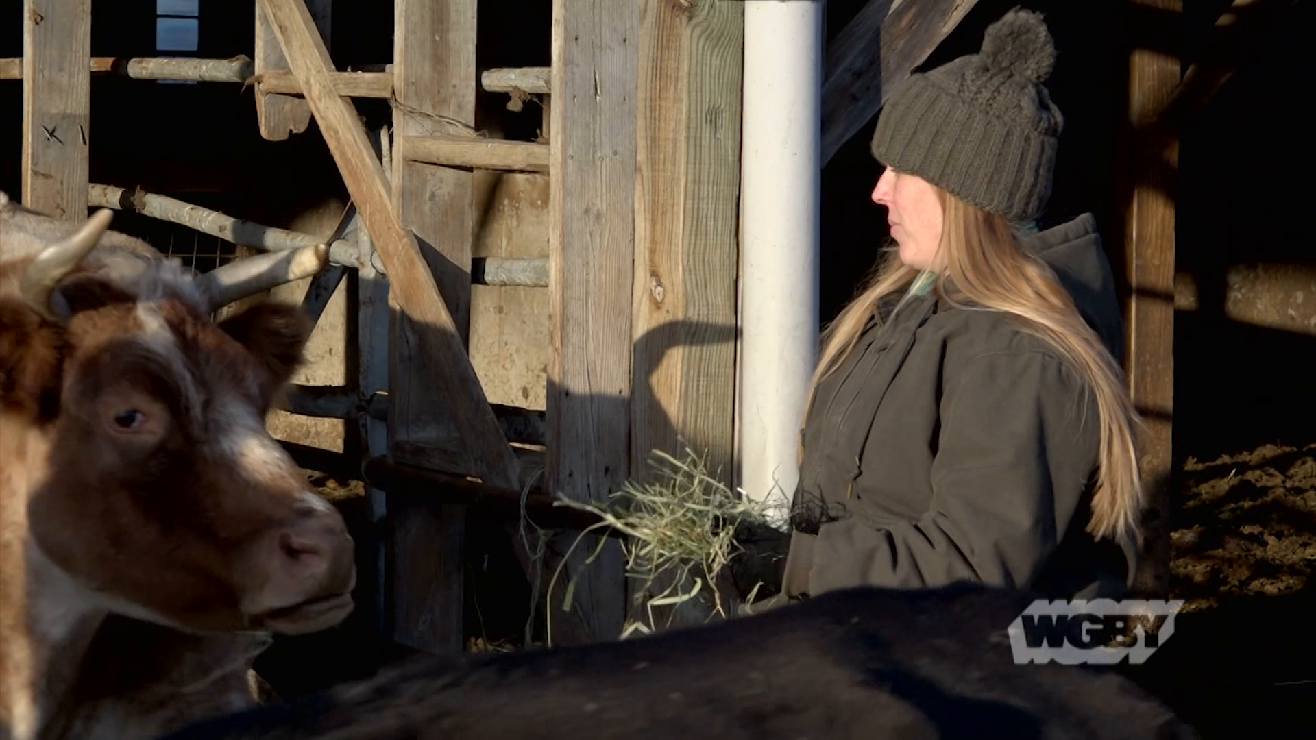 Chicoine Family Farm's Elodie Chicoine shares her CISA Field Notes story about how growing up on a farm has shaped her family for generations.