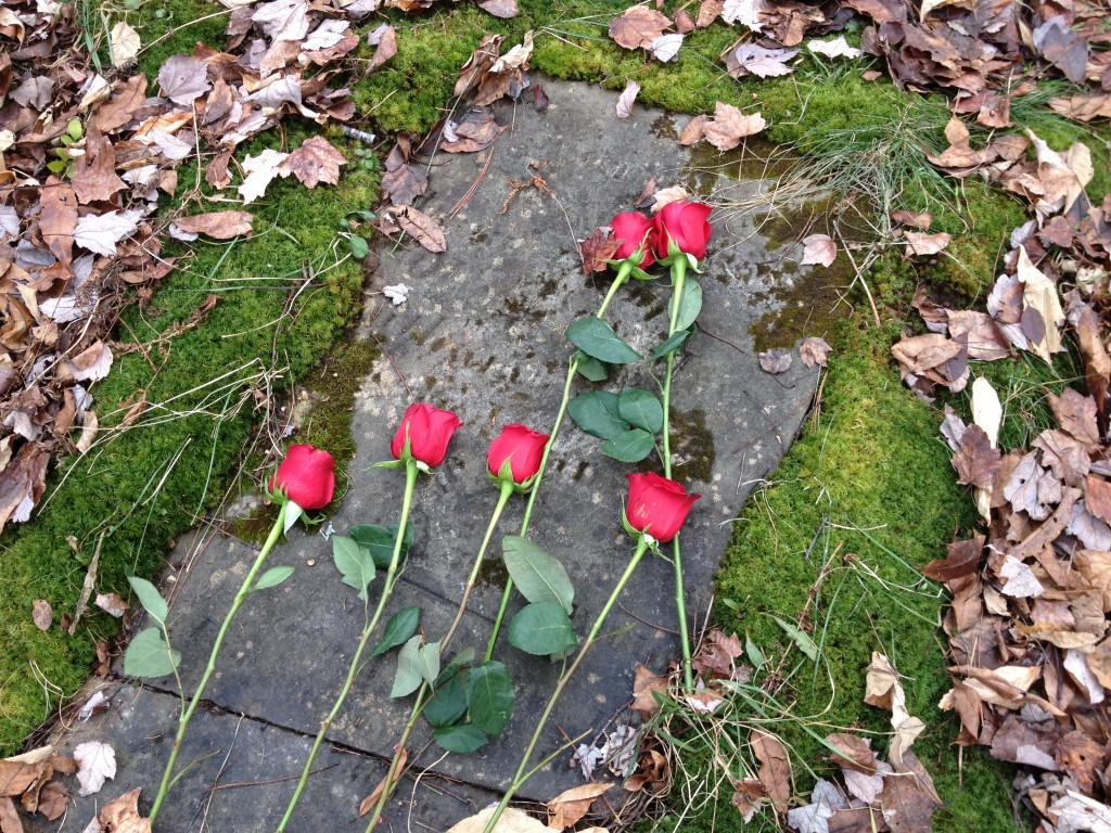 Flowers on Anna's Grave 11-25-14