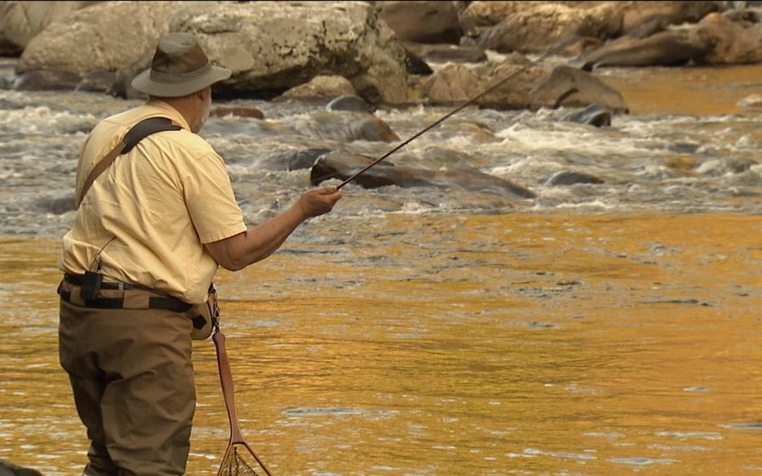 Fly Fishing on the Westfield River (Web Exclusive)
