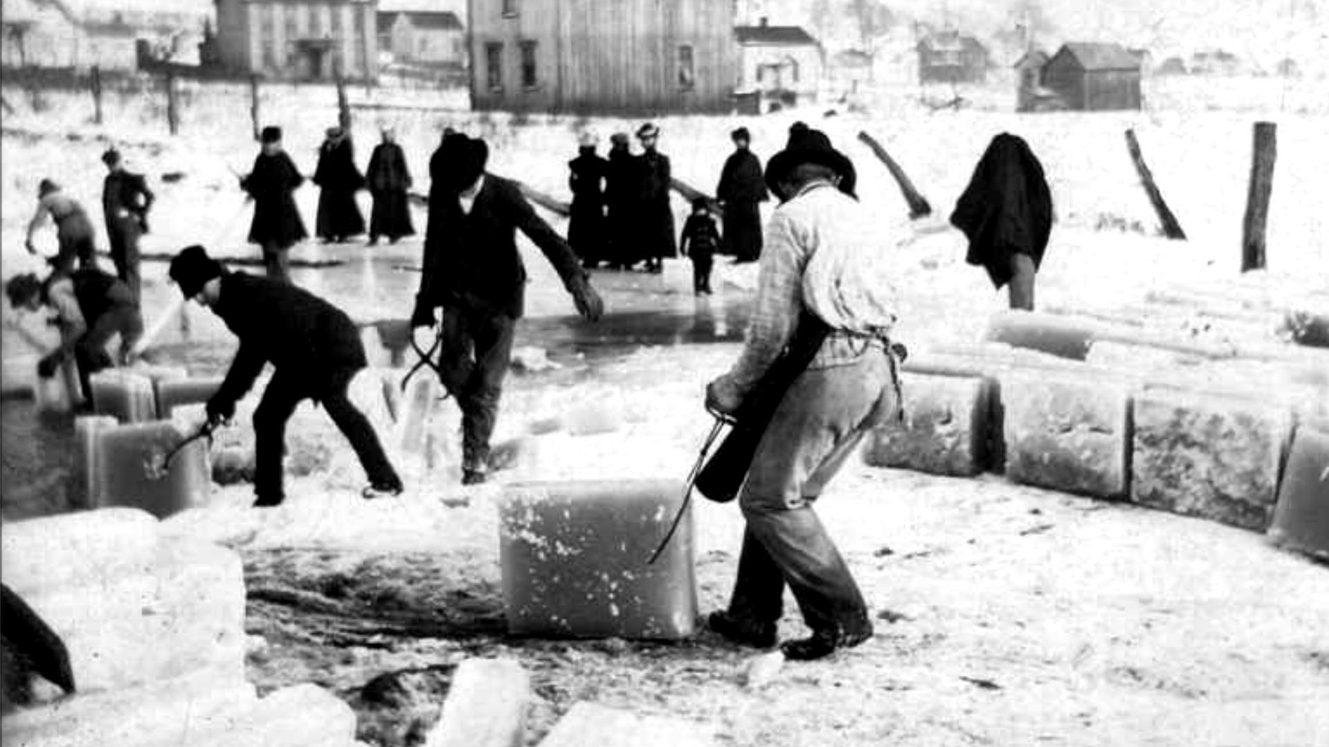Take a look back at commercial ice harvesting, cutting large blocks of ice from fresh water ponds, once the ninth biggest industry in New England.