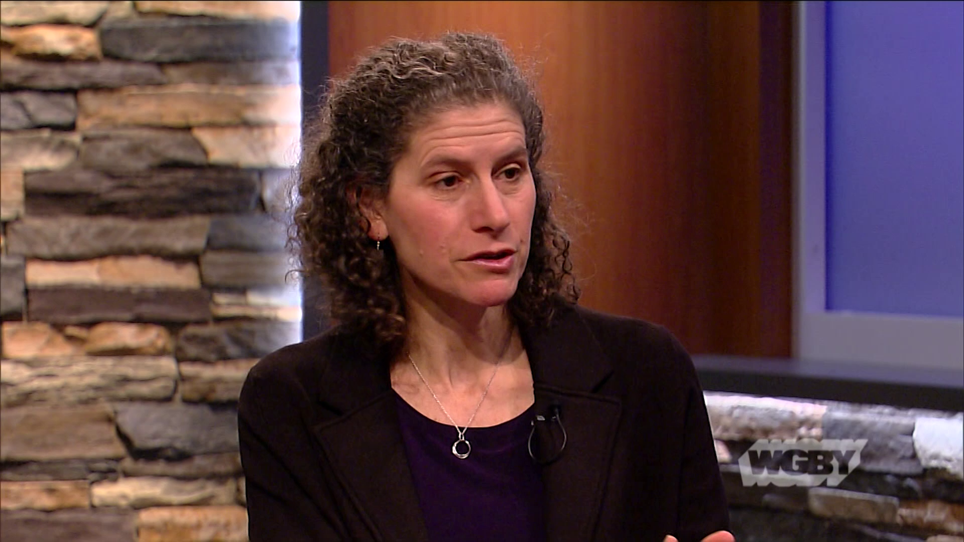 In conjuction with Western Mass. Network to End Homelessness, Pamela Schwartz discusses how she believes legislation can curb homelessness in Massachusetts.