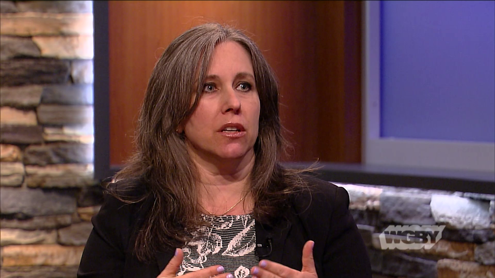 Prof. Jennifer Taub, a Northampton resident, speaks about being offered money in exchange for information about special counsel Robert Mueller.