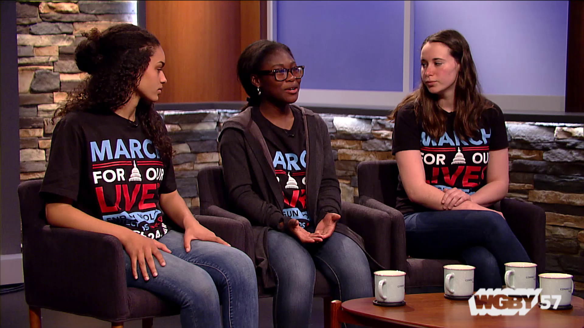 Organized by students, the March for Our Lives protested gun violence and called for more stringent gun laws. Three students from Pittsfield High School talk about their experience at the March 24,2 018 March and how they hope the student movement will propel the conversation about gun control forward,.