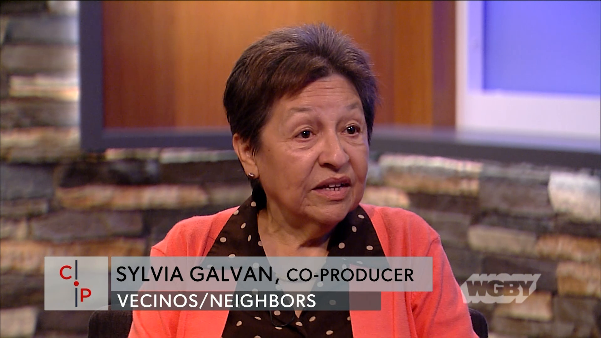 Learn how Holyoke Public Library was able to preserve a local piece of Puerto Rican Heritage by rescuing VHS tapes of the bilingual show Vecinos/Neighbors.