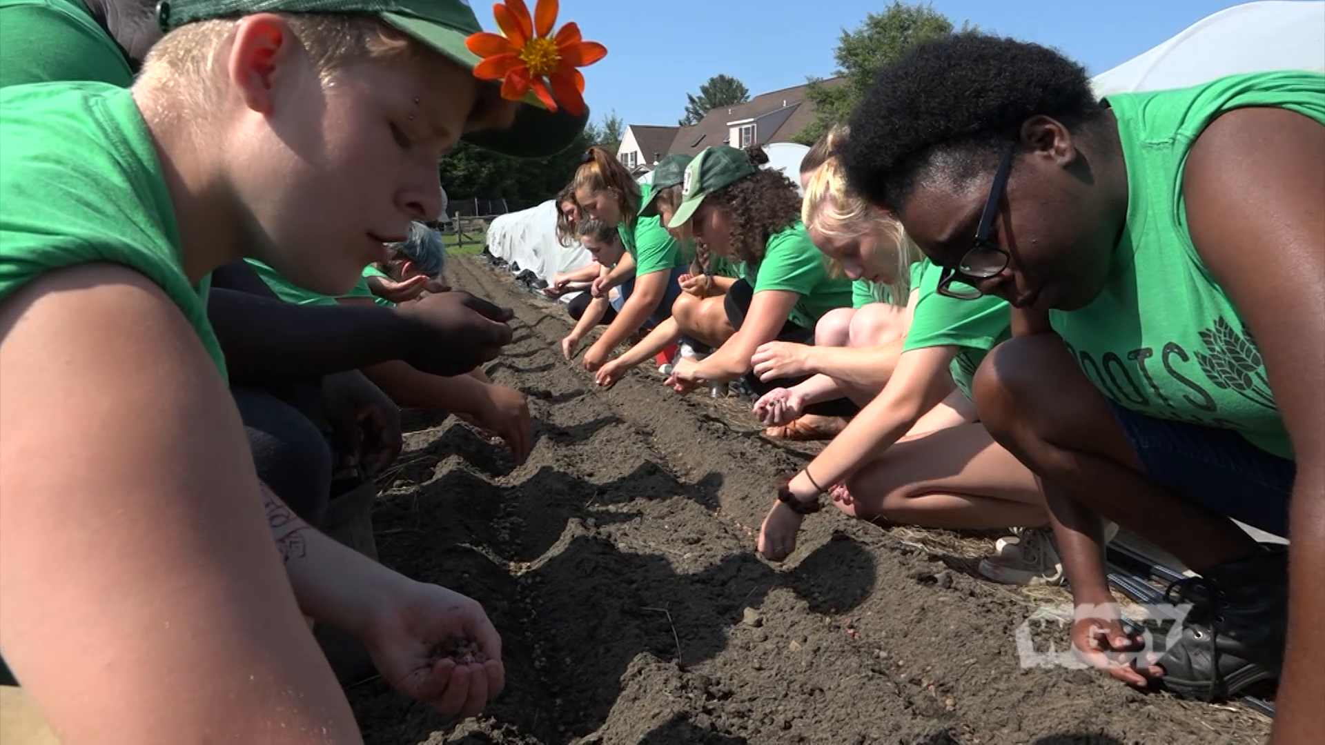 Learn how Roots Rising provides job development opportunities for teens in Pittsfield, MA by linking them with the local farms that produce the food we eat.