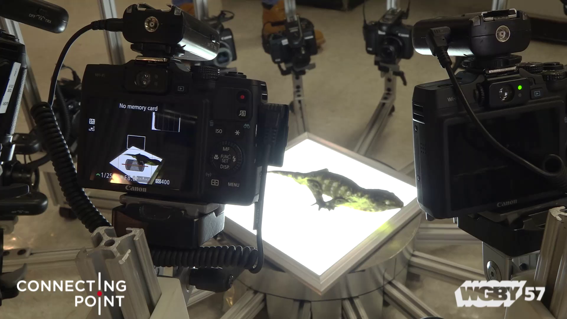 "UMass Amherst' Beast Cam, new type of 3-D digital photography is helping to catalog as many of the world's species as possible.Researchers hope this ""Digital Noah's Ark"" will preserve records of extinct species, while also helping to save some currently endangered animals from extinction."