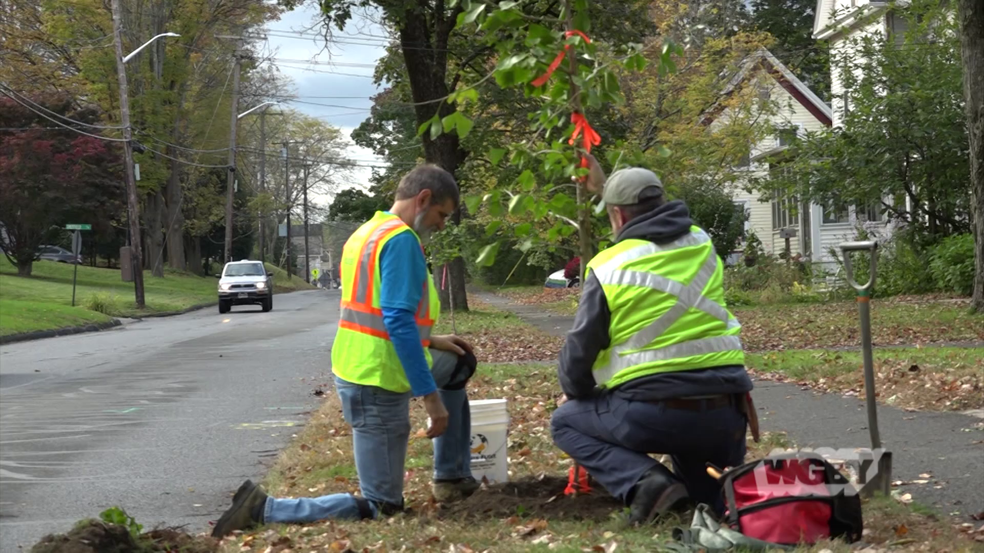 Visit two western Mass towns—Northampton and Lanesborough—to see how urban forestry plays a role in town planning.