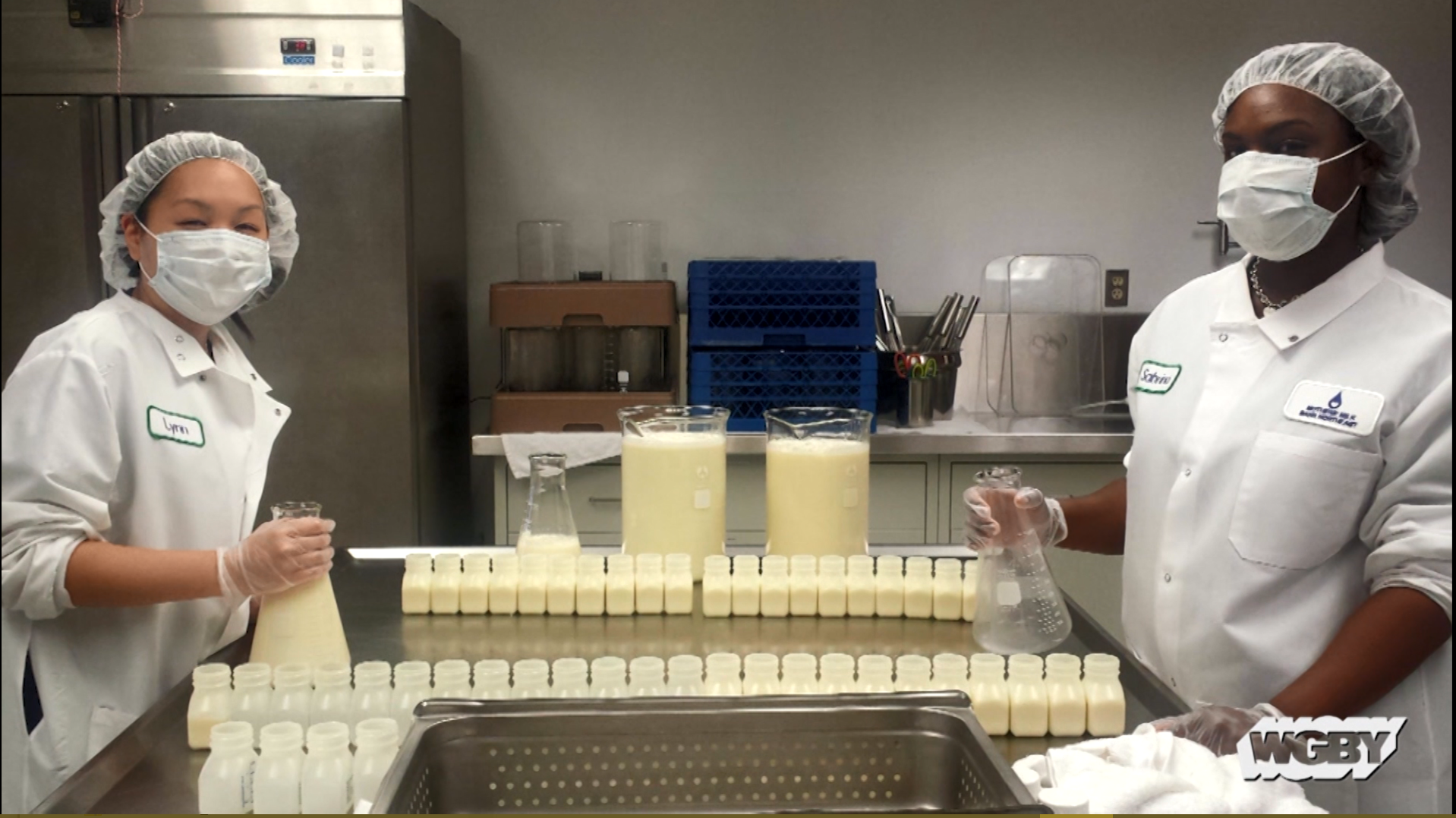 Breast Milk Depots and Donation Banks for Families