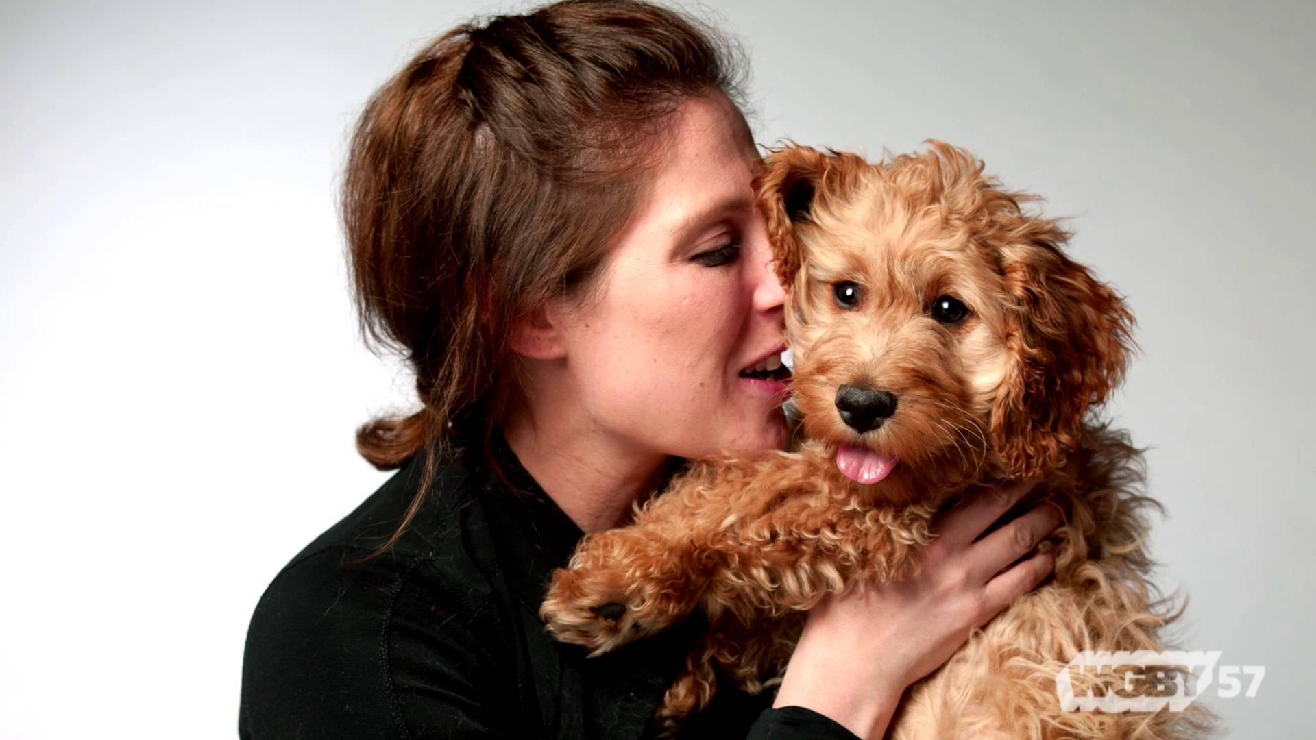 Making It Here: Dog Photographer Amanda Jones