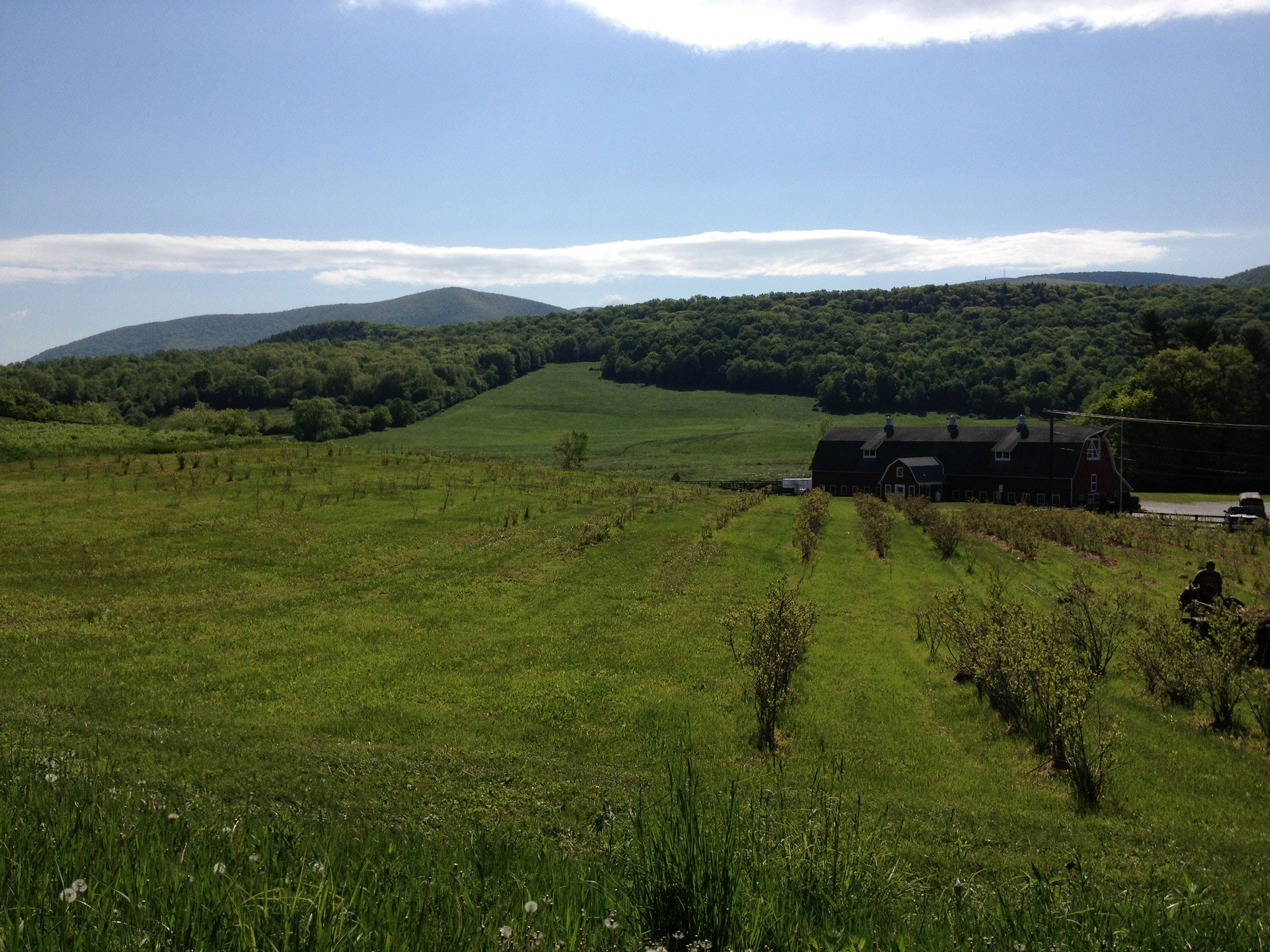 On the Road in Northern Berkshire County: County Overview