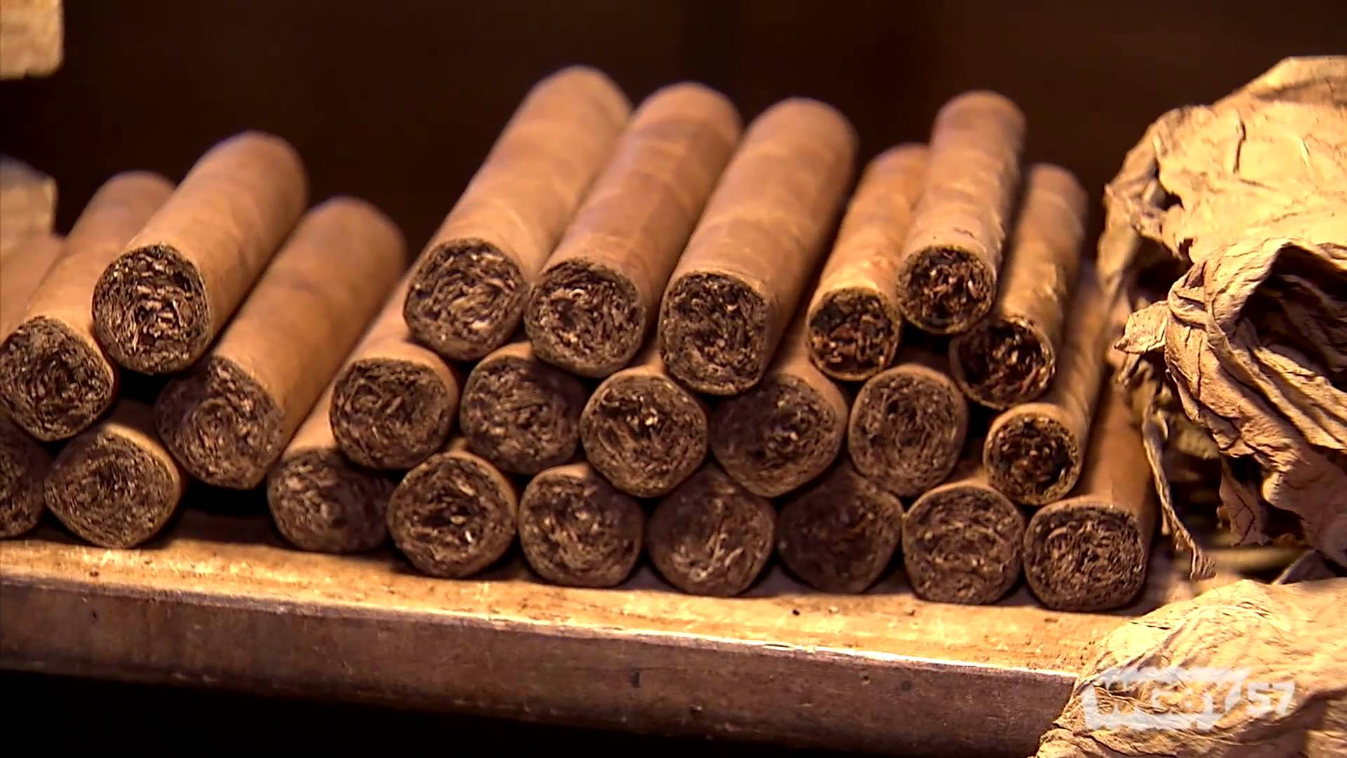 tobacco history Centuries after columbus discovered that new world natives lit up, the stogie remains a status symbol.
